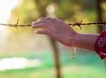 יד אוחזת בגדר