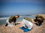 חיילים מתנדבים לנקות את החופים
