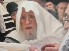"""הגאון רבי אברהם שטרנבוך זצ""""ל"""