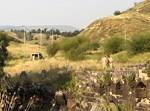 אזור התקרית בגבול ירדן