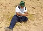 כרמלי במדבר יהודה