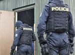 משטרת צ'כיה
