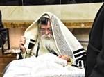 ברית בנדבורנה ירושלים - גארליץ - ביליץ