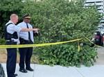 משטרת שיקגו בזירת רצח. אילוסטרציה