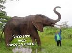יצחק כרמלי לצד פיל