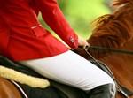 רוכב על סוס, אילוסטרציה
