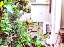מנוע מזגן בחצר