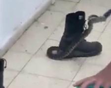 לוכד הנחשים מוציא את הנחש מהנעל
