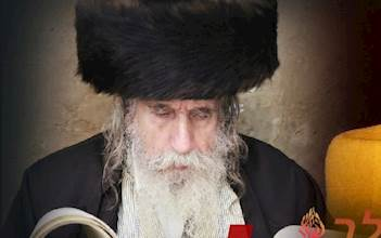"""רבי נתן דוד שפירא זצ""""ל"""