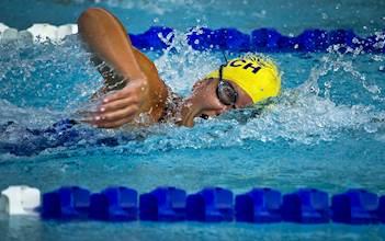 שחייה בבריכה. אילוסטרציה