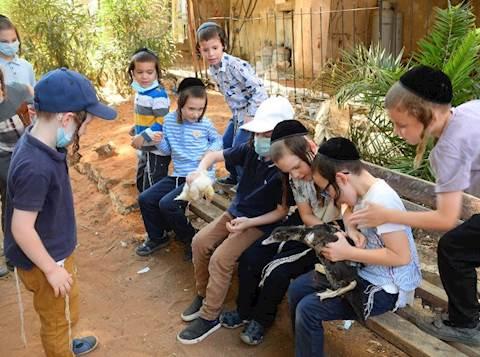 ילדי באבוב יצאו ללימוד על שילוח הקן