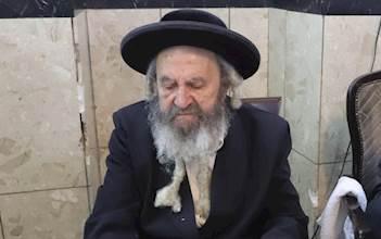 """רבי דוד יוחנן בידרמן זצ""""ל"""