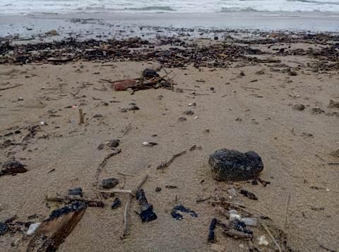 זפת שנפלטה אל החוף במועצה האזורית חוף הכרמל