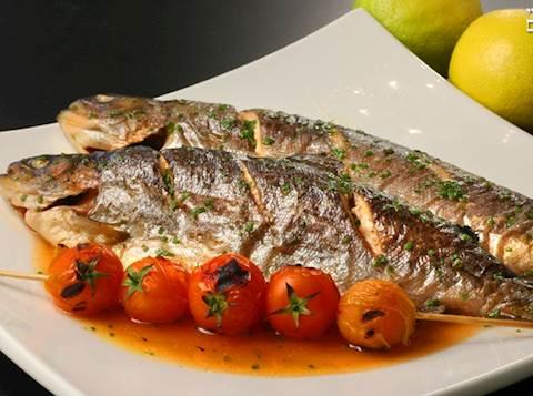 דג פורל 'דגי הדן'