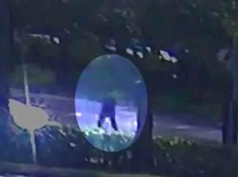 הרוצח מפלורידה סמוך לבית חבד
