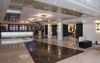 מלון כינורות